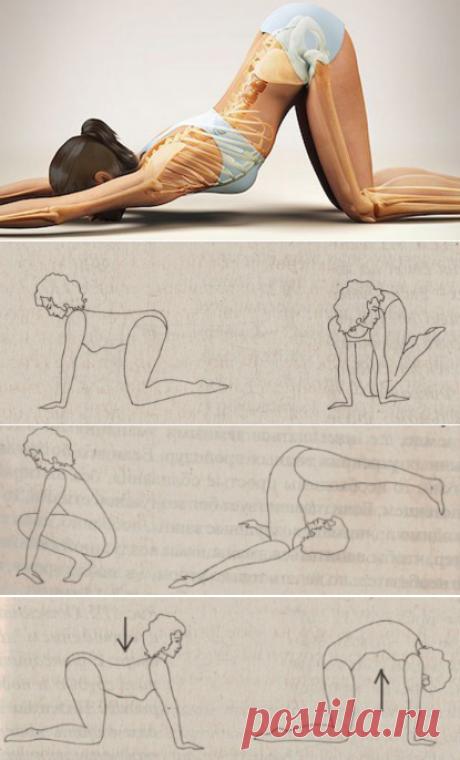 """Статическая растяжка: Упражнения, выравнивающие асимметрию тела - Женский журнал """"Красота и здоровье"""""""