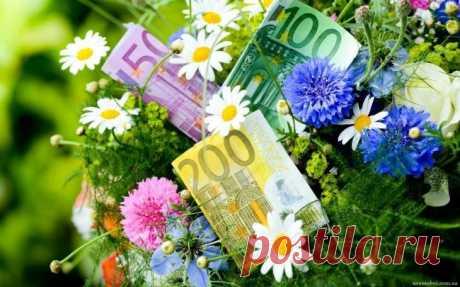 """Цветы и деньги. - Познавательный сайт ,,1000 мелочей"""" - медиаплатформа МирТесен"""