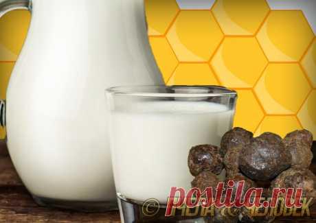 Прополис + Молоко. В чем их секрет «здоровья»
