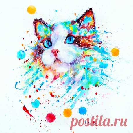 Мы знаем, чего вам не хватает – очаровательных разноцветных котиков!