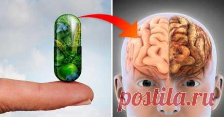 Исследования доказали: 3 витамина предотвращают потерю памяти и болезнь Альцгеймера! Знаете ли вы, что после 65 лет 1 из 5 человек страдают от какой-либо когнитивной проблемы? Вы можете предотвратить это!