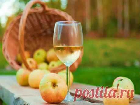 Вино из яблок в домашних условиях - 7 простых рецептов