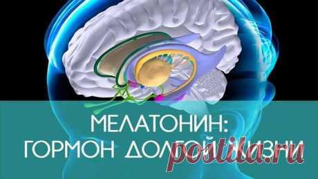 Секрет вечной молодости и долголетия — гормон мелатонин