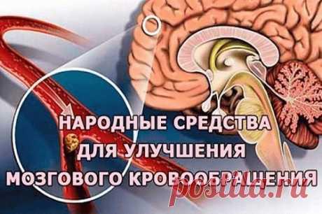 Целебная смесь для укрепления сосудов, восстановления памяти, восстановления мозгового кровообращения - Я ЗДОРОВ! - медиаплатформа МирТесен