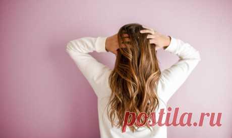 Диета для здоровых волос - диета, здоровые волосы, диета для здоровых волос, минералы, микроэлементы, полезные продукты, правил
