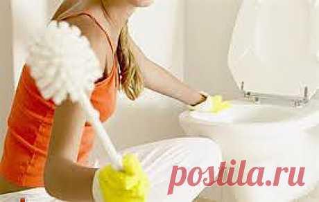 4 простых способа поддержания туалета в чистоте..