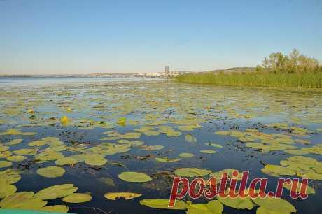 на реке летом :: Андрей ЕВСЕЕВ – Социальная сеть ФотоКто Фотография №492165 в рубрике «Пейзаж». Автор: Андрей ЕВСЕЕВ