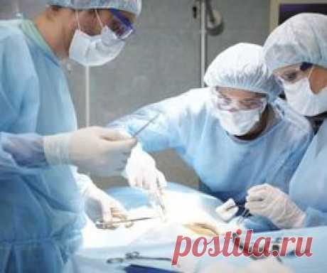 Отзывы про лечение рака поджелудочной железы в Израиле. Как рак поджелудочной железы лечится за рубежом и сколько это стоит. Отзывы о лечении онкологии поджелудочной железы в Tel Aviv CLINIC. Методы хирургического удаления опухоли и стоимость лечения рака поджелудочной железы на поздней стадии с метастазами