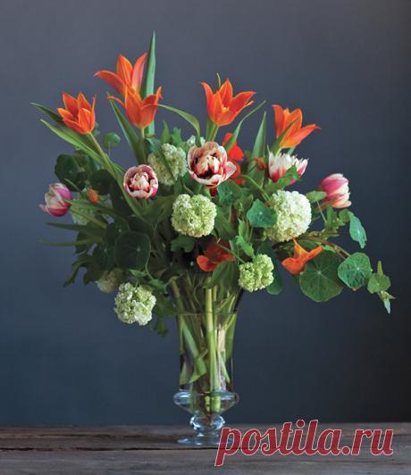 Обработайте стебли двойных тюльпанов и выстройте их в ровный горизонтальный ряд в верхней части аранжировки.