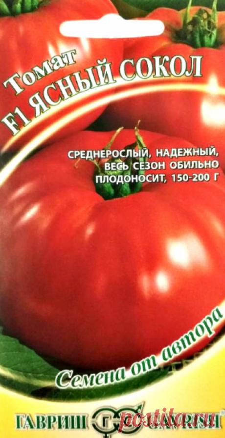"""Семена. Томат """"Ясный сокол F1"""" (12 штук)"""