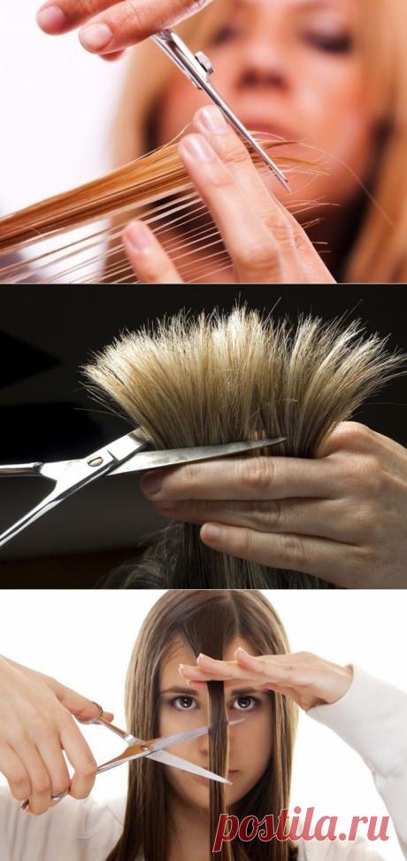Волосы — не просто для красоты. Есть примета: обрезать волосы — менять всю жизнь!