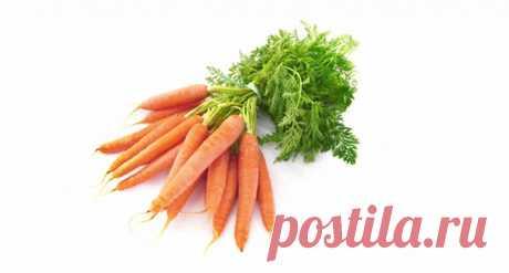 Морковь: рецепты от шефов – «Еда»