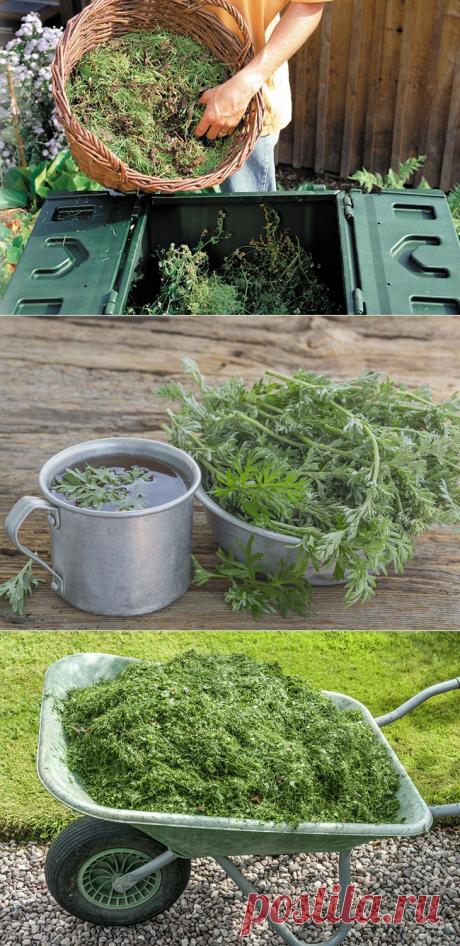 Как можно с пользой использовать сорняки после прополки