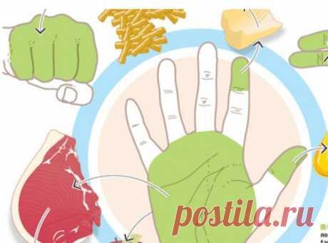 Объясняем на пальцах: Сколько еды нужно съедать каждый день. - ЖЕНСКИЙ МИР - медиаплатформа МирТесен