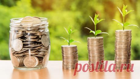 Финансовая грамотность: учим подростка управлять карманными деньгами   Папамамам — МИФ