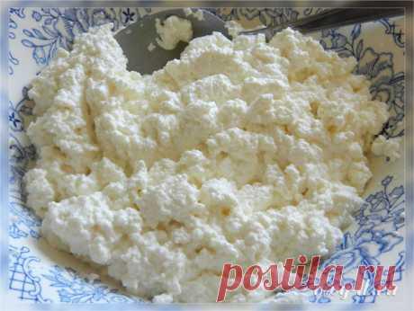 Творожный сливочный сыр за полчаса
