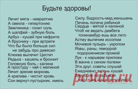 Gallery.ru / Фото #34 - Стоит задуматься - Clematis