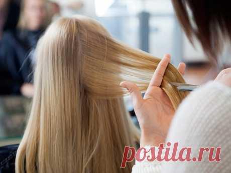 Лунный календарь стрижки волос наавгуст 2020 года Стрижка волос— ответственная процедура, поэтому так важно выбирать время идень для того, чтобы записаться кпроверенному мастеру. Вавгусте 2020 года советы астрологов позволят найти время для того, чтобы преобразиться инеиспортить локоны.