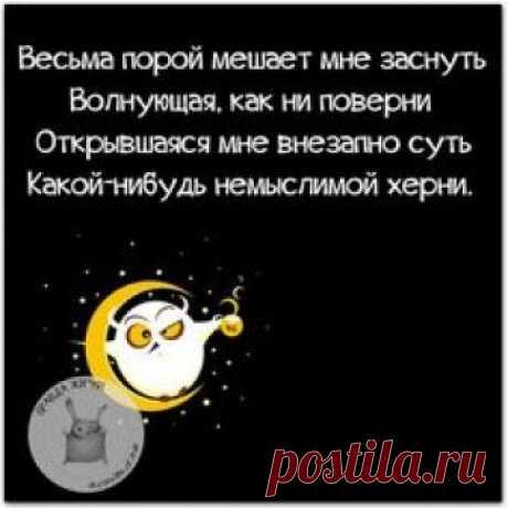 #правдажизни #юмор #позитив #ночь