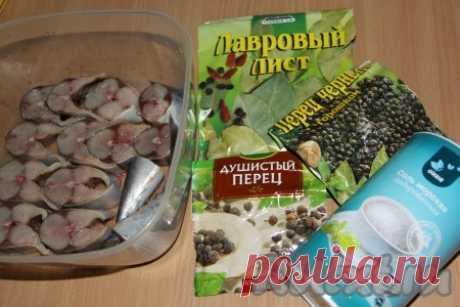 Домашняя малосольная скумбрия - 5 пошаговых фото в рецепте