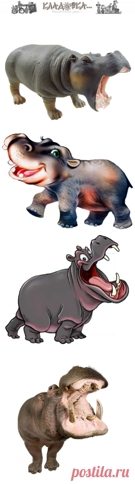 Кладовка...: Бегемоты -на прозрачном фоне