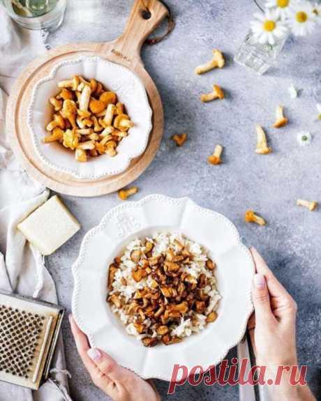 Открываем сезон! Три простых рецепта блюд с лисичками . Милая Я