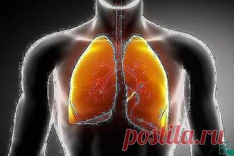 #МОИ_ХИТРОСТИ# Курильщикам на заметку: старинный эликсир для очистки легких!  Уникальный рецепт для тех, кто не может бросить курить. Он действительно очистит ваши легкие.  Конечно же, курение вредит вашему здоровью. Вы это понимаете, но оставить вредную привычку вам не под силу? Тогда вы просто обязаны добавить эти продукты в свое повседневное меню:  Имбирь. Эта древняя пряность уже давно известна своими целебными свойствами. Но главное, что вы должны знать — имбирь помож...