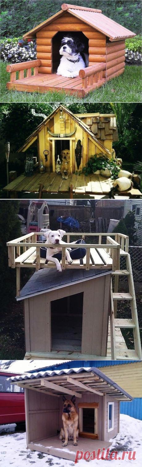Как сделать будку для собаки своими руками.
