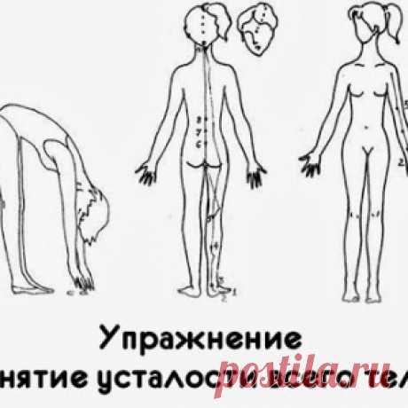 Упражнение «Снятие усталости всего тела»