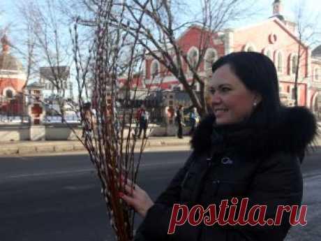 Вербное воскресенье: как встретить праздник по правилам и чего не стоит делать в этот день - Вечерняя Москва
