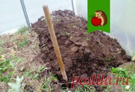 Как сделать землю на огороде рыхлой и мягкой? | садоёж | Яндекс Дзен