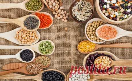 5 лучших рецептов живой кухни с имбирем и зеленой гречкой   Слайдшоу   ВитаПортал - Здоровье и Медицина