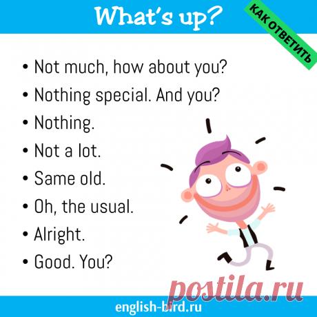 """Как ответить на вопросы """"How are you?"""", """"What's up?"""" и т.п."""