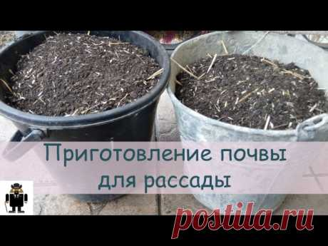 Маргарита Боркина
