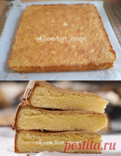 Король выпечки: виды бисквитного теста, которые нужно знать!