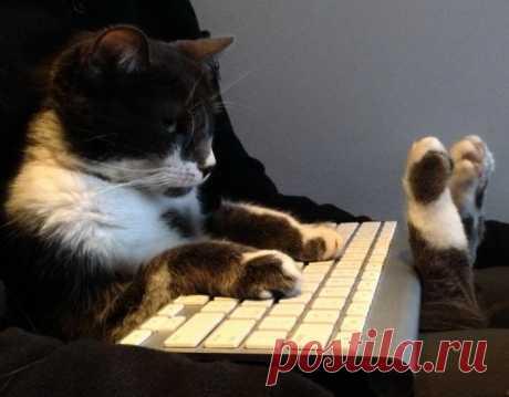 Клавиатура у меня есть! Компьютер теперь нужен...