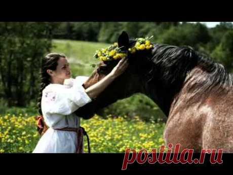 Мы с конем (Любэ) - YouTube