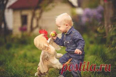 Фотографы со всего мира делают великолепные фото детей и животных / Питомцы