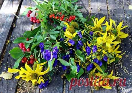 Сегодня - день осенних цветов! Их становится меньше,тем они дороже и ближе)))🌸💛🌺🍂🏵🍂🌻🍂