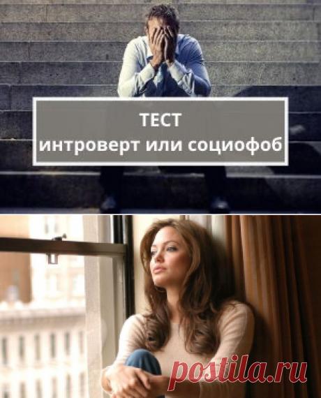 Тест: интроверт или социофоб | Психология