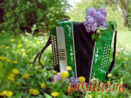 ♥ღ♥Музыкальная пауза♥ღ♥.