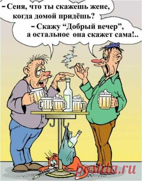« Лучший анекдот года очень ржачный на сегодняшний день.» — карточка пользователя vyo3003 в Яндекс.Коллекциях