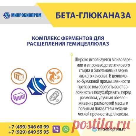 Бета-глюканаза - фермент, катализирующий 1,3 и 1,4 гликозидные связи из β-глюканов, разбивает макромолекулы вязкого полимера до низковязких изомальтозы и мальтотриозы. Фермент обладает значительным уровнем побочных активностей к расщеплению гемицеллюлозы, ксиланов и целлюлозы. Бета-глюканаза является ферментом широкого применения и эффективно используется в технологических процесса различных отраслей: производство спирта и пива, целлюлозно-бумажной и текстильной промышленности.