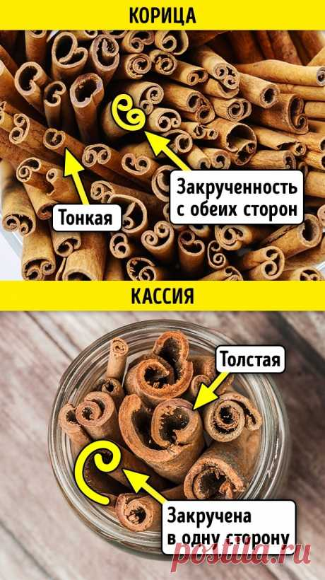 How to distinguish natural spices and spices from a fake
