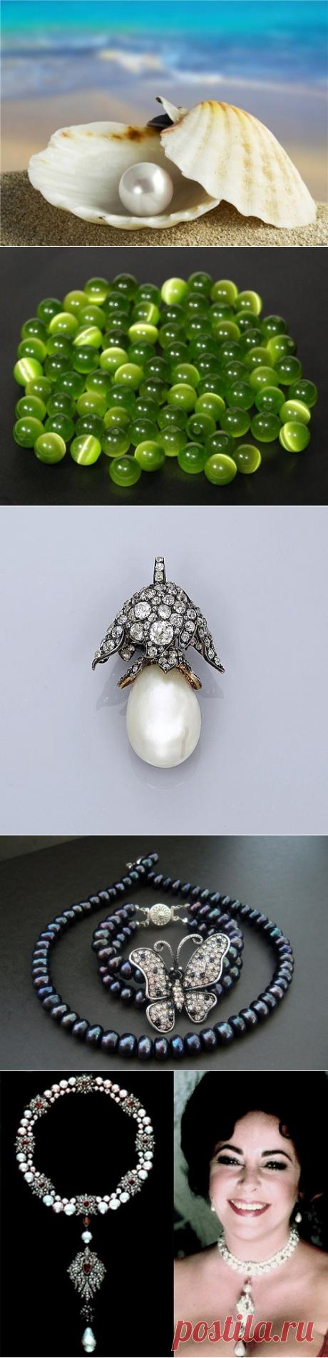 Интересные факты про жемчуг – драгоценность, созданную моллюском