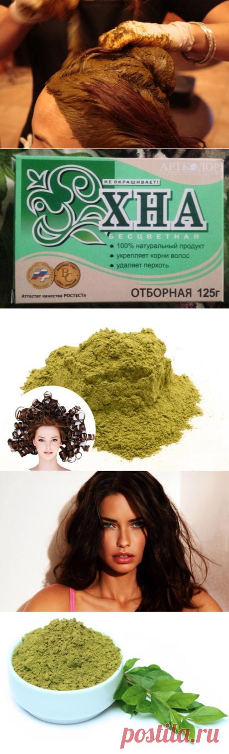 La alheña y la alheña incoloro para el crecimiento de los cabello