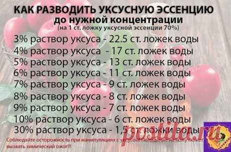 (42) Schoolmates
