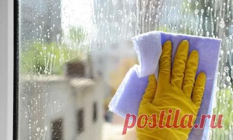 Мою окна раз в год. Делюсь рецептом, который защищает окна от пыли и грязи | Мой сад и огород | Яндекс Дзен