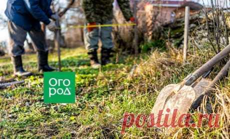 Как измерить и выровнять дачный участок своими руками – надежные способы | Дела огородные (Огород.ru)