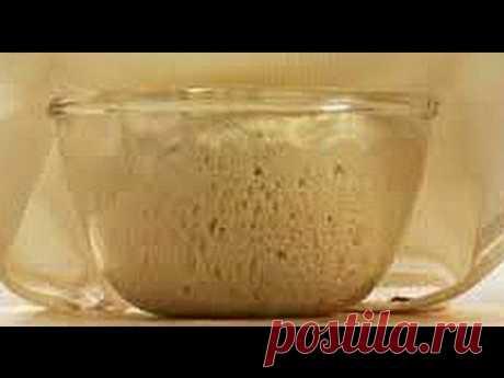 (297) Тесто без замеса. Тесто для приготовления впрок на неделю. - YouTube